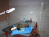 vetcareclinic_birmanez_2